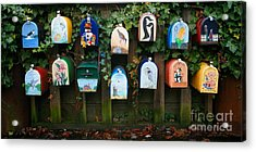 You've Got Mail Acrylic Print by Chris Dutton