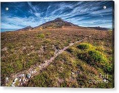 Yr Eifl Trail Acrylic Print by Adrian Evans
