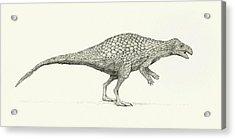 Zalmoxes Dinosaur Acrylic Print by Nemo Ramjet