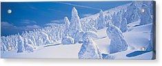 Zao Yamagata Japan Acrylic Print by Panoramic Images