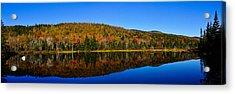 Zealand Pond Reflections Acrylic Print by Rockybranch Dreams