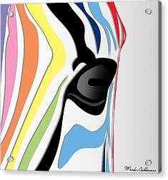 Zebra 1 Acrylic Print by Mark Ashkenazi
