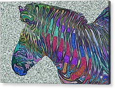 Zebra 2- Happened At The Zoo  Acrylic Print by Jack Zulli