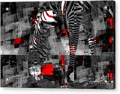 Zebra Art - 56a Acrylic Print by Variance Collections