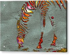 Zebra Art - 64spc Acrylic Print by Variance Collections