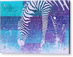 Zebra Art - Bp02t01 Acrylic Print by Variance Collections