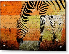 Zebra Art - Rng02t01 Acrylic Print by Variance Collections