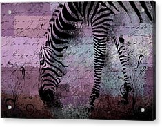 Zebra Art - Sc01 Acrylic Print by Variance Collections
