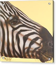 Acrylic Print featuring the painting Zebra by Darren Robinson