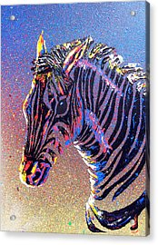 Zebra Fantasy Acrylic Print by Mayhem Mediums