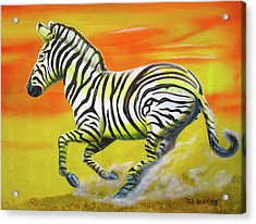 Acrylic Print featuring the painting Zebra Kicking Up Dust by Thomas J Herring