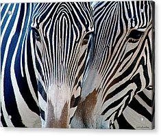 Zebra Pattern Acrylic Print
