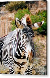 Acrylic Print featuring the digital art Zebra Rendition I by Kenneth Montgomery