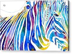 Zebra Stripes Acrylic Print by Jo Lynch