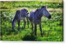 Zebra X Two Acrylic Print