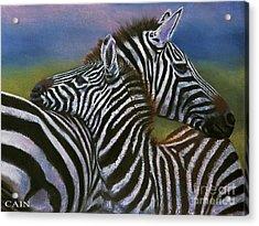 Zebras In Love Giclee Print Acrylic Print