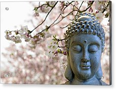 Zen Buddha Meditating Under Cherry Blossom Trees Acrylic Print