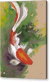Zen Comet Goldfish Acrylic Print by Tracie Thompson