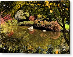 Zen Fall Colors Acrylic Print