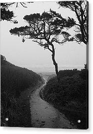 Zen Path Acrylic Print