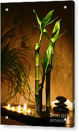 Zen Time Acrylic Print by Olivier Le Queinec