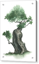 Zen Tree 1000 Acrylic Print by Sean Seal