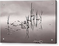Zen Waters Acrylic Print