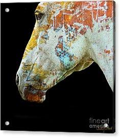 Zeniah Variation 5 Acrylic Print by Judy Wood