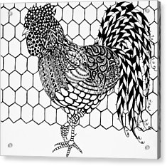Zentangle Rooster Acrylic Print