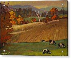 Ziemba Farm Acrylic Print by Len Stomski