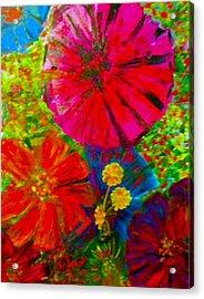 Zinnia Garden Acrylic Print by Anne Hamilton