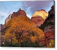 Zion Cliffs Autumn Acrylic Print by Leland D Howard