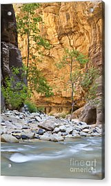 Acrylic Print featuring the photograph Zion Narrows by Bryan Keil
