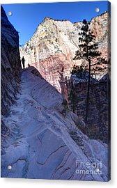 Zion National Park Hiker Climbs Hidden Canyon Trail Acrylic Print by Gary Whitton