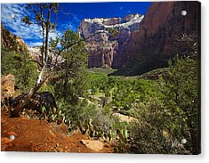 Zion National Park River Walk Acrylic Print