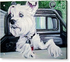 Zoey Waits For A Ride Acrylic Print