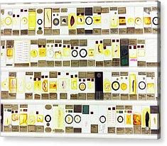 Zoological Microscope Slides Acrylic Print by Daniel Sambraus