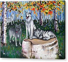 Zorros Wolves Amid The Aspens Acrylic Print