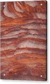 A Close View The Layered Sandstone Acrylic Print by Taylor S. Kennedy