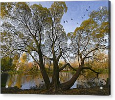 A Day Of October Acrylic Print by Vladimir Kholostykh