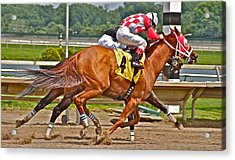 Acrylic Print featuring the photograph  Betting On Number Four by Alice Gipson