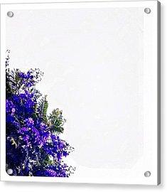 Corner Bouquet Acrylic Print