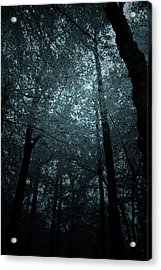 Dark Forest Silhouetted Against Sky Acrylic Print