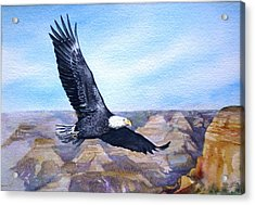 Acrylic Print featuring the painting  Eagle   American Bald Eagle by Sandra Phryce-Jones