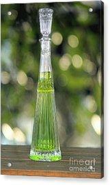 Elixir Acrylic Print by Sophie Vigneault