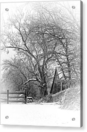 Flurries Acrylic Print by Robin-Lee Vieira