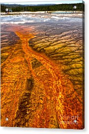 Grand Prismatic Spring In Yellowstone National Park - 02 Acrylic Print by Gregory Dyer