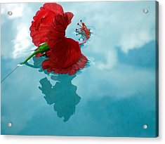 Hibiscus Reflections Acrylic Print