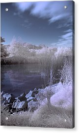 Acrylic Print featuring the photograph  Infrared Pond by Beverly Cash
