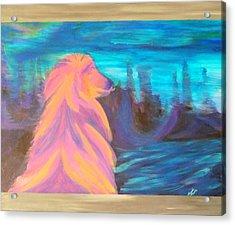 Lassie Acrylic Print by Hatin Josee